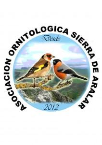 logo13.45.38
